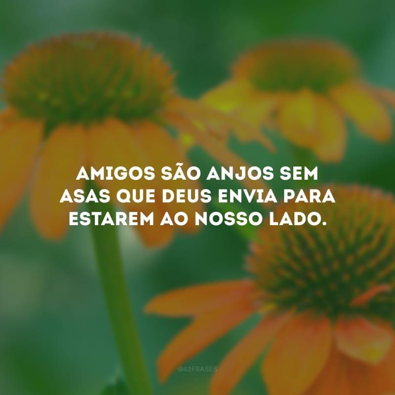 Amigos são anjos sem asas que Deus envia para estarem ao nosso lado.
