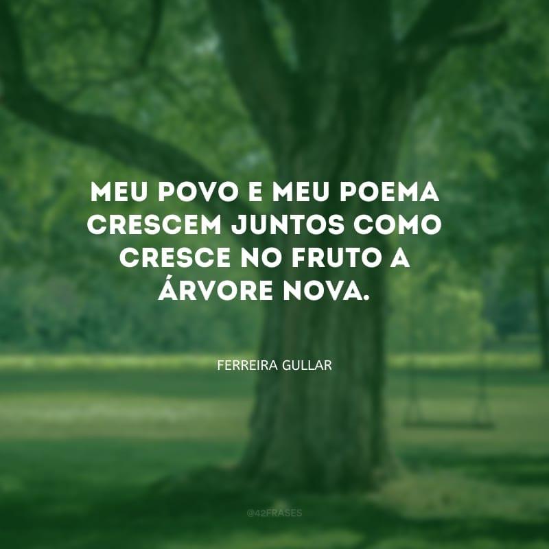 Meu povo e meu poema crescem juntos como cresce no fruto a árvore nova.