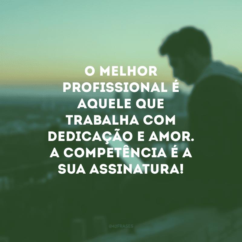 O melhor profissional é aquele que coloca o selo da dedicação no fruto do seu trabalho.