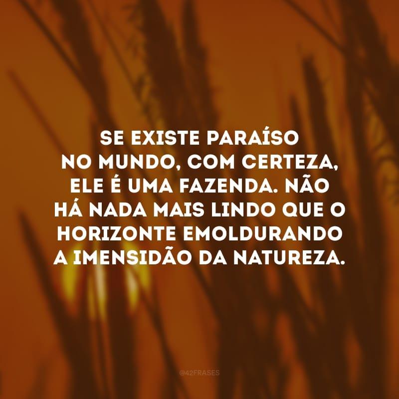 Se existe paraíso no mundo, com certeza, ele é uma fazenda. Não há nada mais lindo que o horizonte emoldurando a imensidão da natureza.