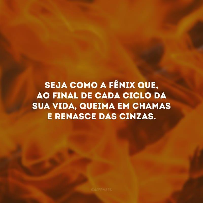 Seja como a fênix que, ao final de cada ciclo da sua vida, queima em chamas e renasce das cinzas.