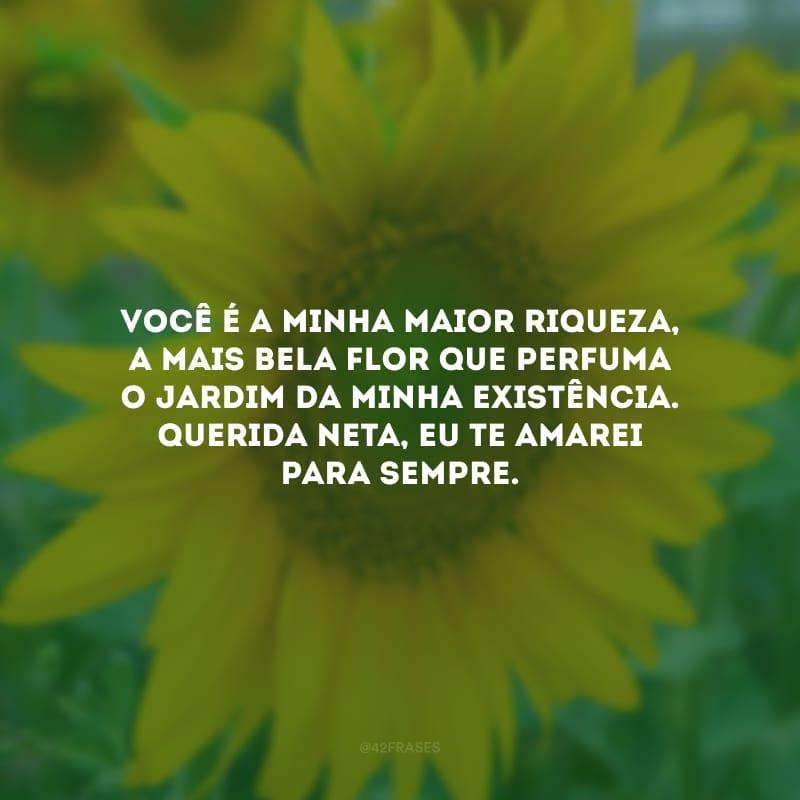 Você é a minha maior riqueza, a mais bela flor que perfuma o jardim da minha existência. Querida neta, eu te amarei para sempre.