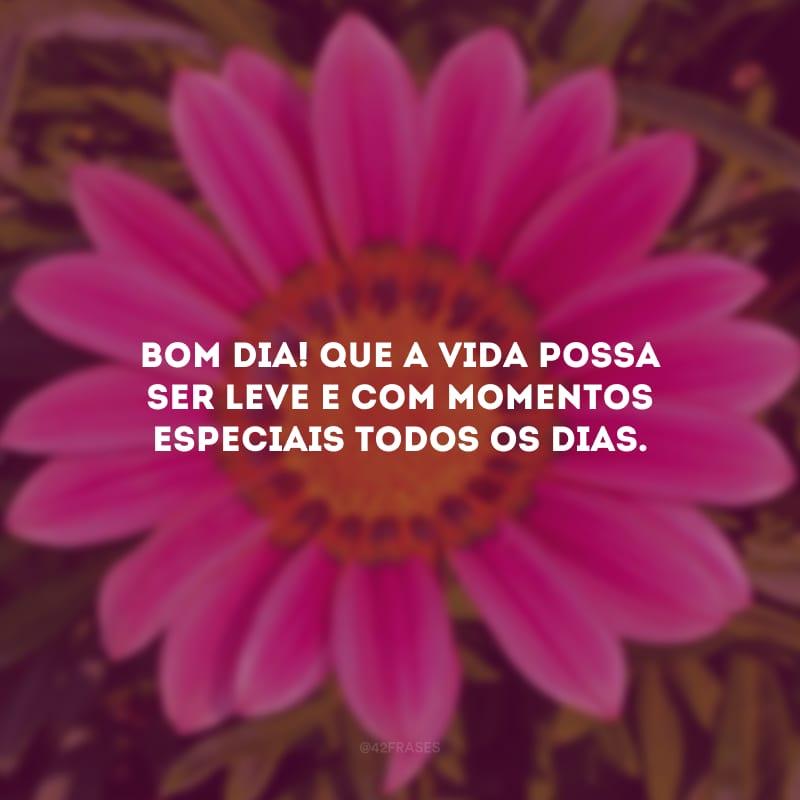 Bom dia! Que a vida possa ser leve e com momentos especiais todos os dias.