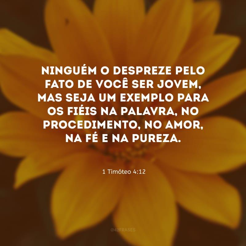Ninguém o despreze pelo fato de você ser jovem, mas seja um exemplo para os fiéis na palavra, no procedimento, no amor, na fé e na pureza.