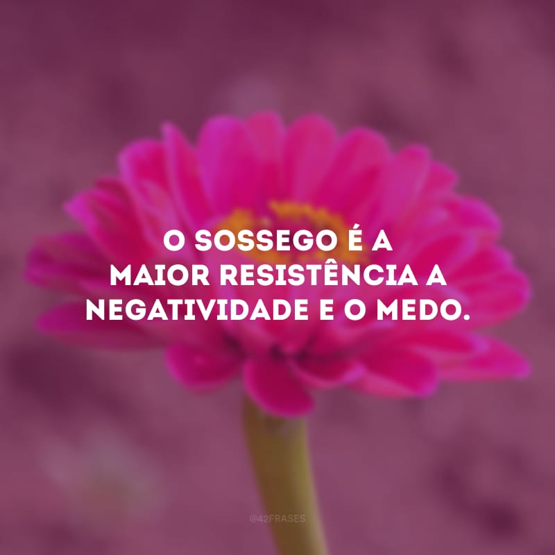 O sossego é a maior resistência a negatividade e o medo.
