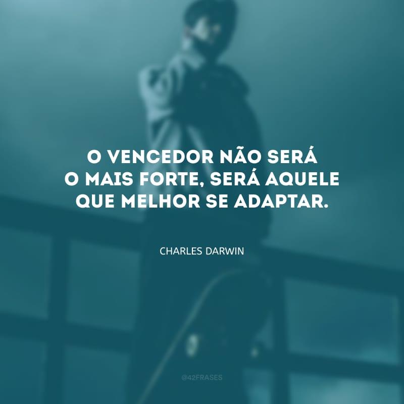 O vencedor não será o mais forte, será aquele que melhor se adaptar.