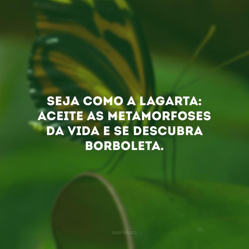 Seja como a lagarta: aceite as metamorfoses da vida e se descubra borboleta.