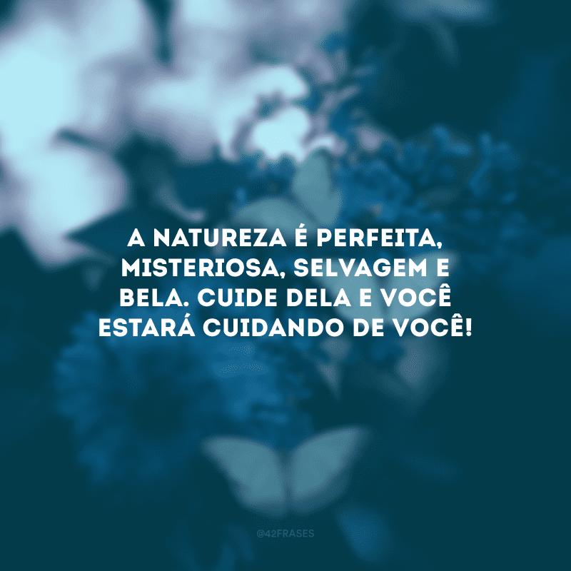 A natureza é perfeita, misteriosa, selvagem e bela. Cuide dela e você estará cuidando de você!