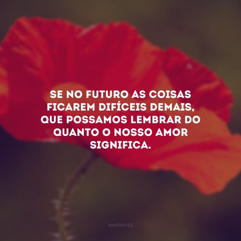 Se no futuro as coisas ficarem difíceis demais, que possamos lembrar do quanto o nosso amor significa.