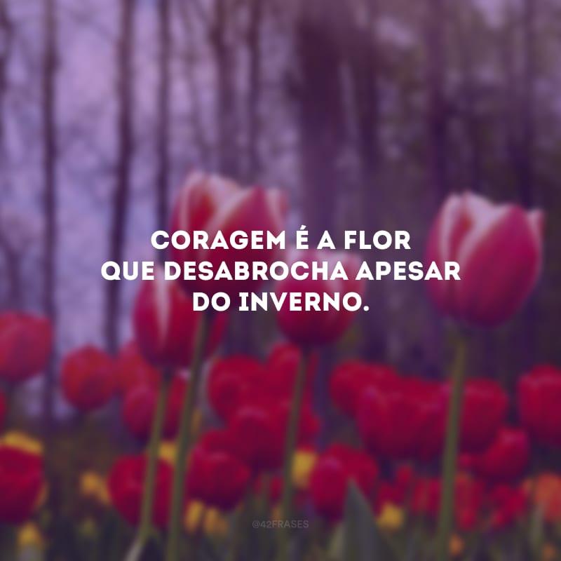 Coragem é a flor que desabrocha apesar do inverno.