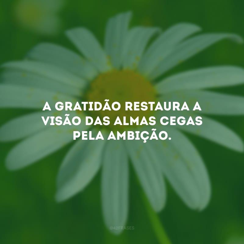A gratidão restaura a visão das almas cegas pela ambição.