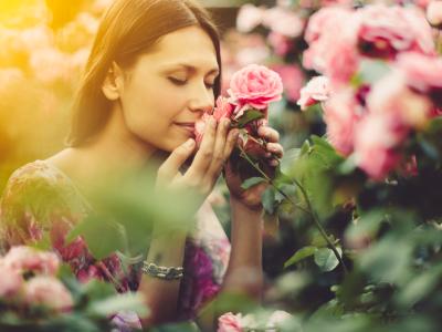 60 frases de bom dia com rosas que deixarão sua vida mais bonita