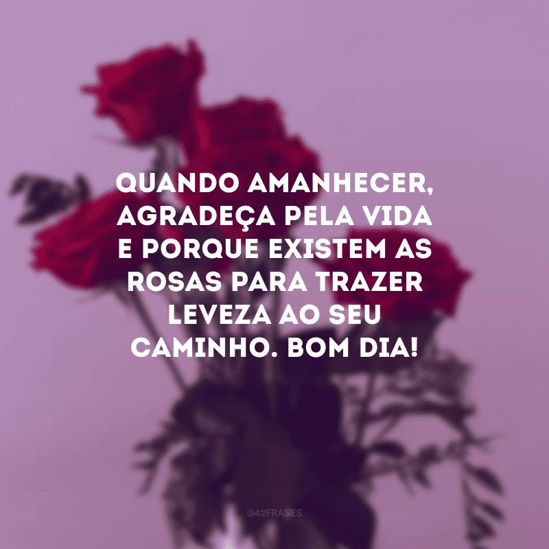 Quando amanhecer, agradeça pela vida e porque existem as rosas para trazer leveza ao seu caminho. Bom dia!