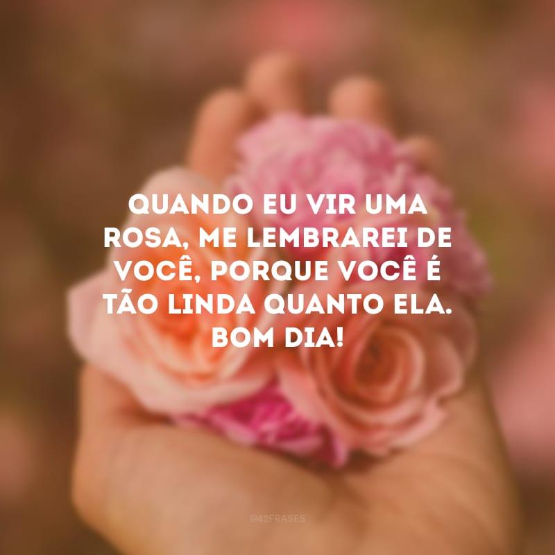 Quando eu vir uma rosa, me lembrarei de você, porque você é tão linda quanto ela. Bom dia!