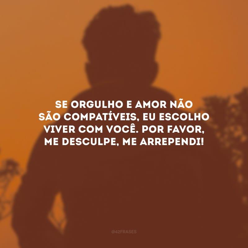 Se orgulho e amor não são compatíveis, eu escolho viver com você. Por favor, me desculpe, me arrependi!